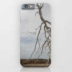 Alian Tree at The Israel Museum Jerusalem iPhone 6s Slim Case