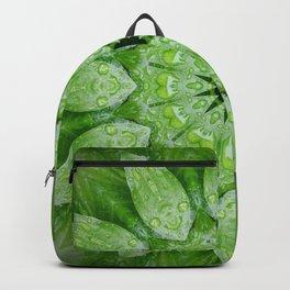 Green Mandala Plant Backpack