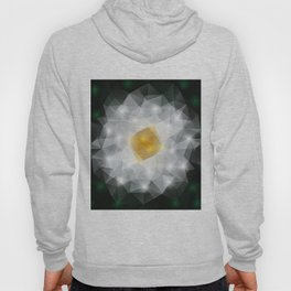 Abstract polygonal flower Hoody