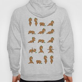 Yoga Bear Hoody
