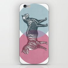 In which the cat is dead and alive iPhone & iPod Skin