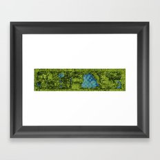 Central Park, A View From Above Framed Art Print