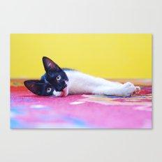 cat #2 Canvas Print
