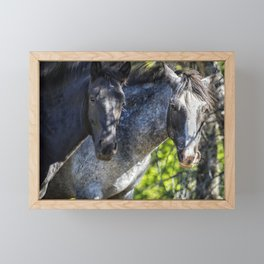 Mica and Malpais - Pryor Mustangs Framed Mini Art Print