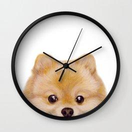 Pomeranian Dog illustration original painting print Wall Clock