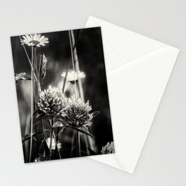 Clover and Daisies BW Stationery Cards