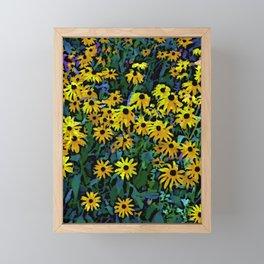 Black-Eyed Susans Framed Mini Art Print