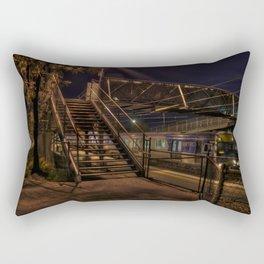 eggHDR1398 Rectangular Pillow