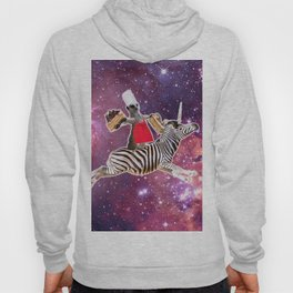 Lemur Riding Zebra Unicorn Eating Cake Hoody