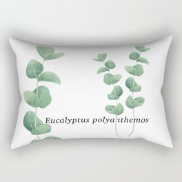 Eucalyptus polyanthemos leaves botanical illustration Rectangular Pillow