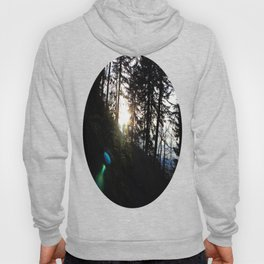 Lens flare through the trees Hoody