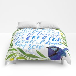 All I Have Seen - Ralph Waldo Emerson Quote Comforters