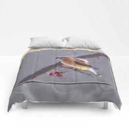 Cedar Waxwing With Berry Comforters