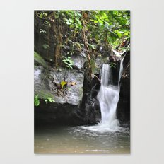Waterfall in Trinidad Canvas Print