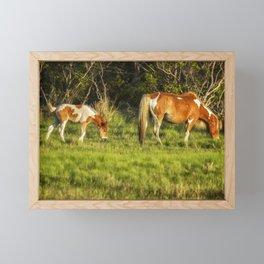 Following Mom - Chincoteague Pinto Foal No. 3 Framed Mini Art Print