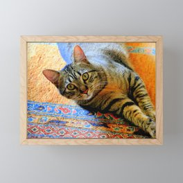 Click, Wha...! Framed Mini Art Print