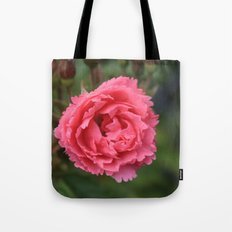 pink wild rose flower in green background. Floral photography. Tote Bag