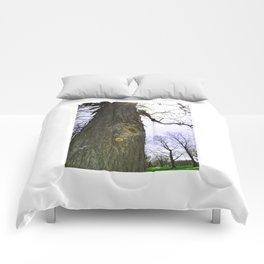Wrangled Comforters