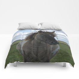 Blue Eyed Dartmoor Pony Comforters