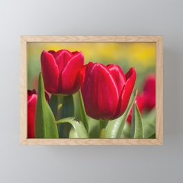 Tulips 12 #floral #tulip Framed Mini Art Print