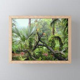 Singapore Botanical Garden 2 Framed Mini Art Print