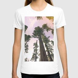 Redwood Portal II T-shirt
