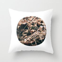 Vintage frog in the leaves Throw Pillow