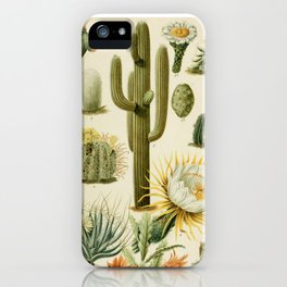 Naturalist Cacti iPhone Case