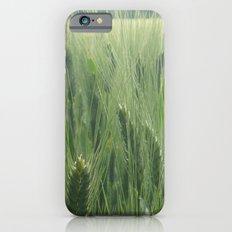 Spring wheat iPhone 6s Slim Case