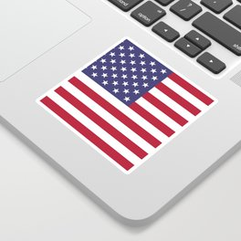 USA National Flag Authentic Scale G-spec 10:19 Sticker