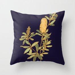 Banksia on Indigo Blue Botanical Illustration Throw Pillow