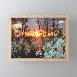 Spring Blossoms Sunset Framed Mini Art Print