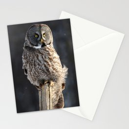 Steadfast in the wind Stationery Cards