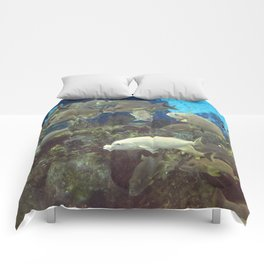 Bahamas Cruise Series 70 Comforters