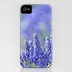 Morning Light iPhone (4, 4s) Slim Case