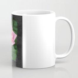 Pink Roses in Anzures 2 Blank P4F0 Coffee Mug