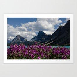 Purple Flowers on Bow Lake Art Print