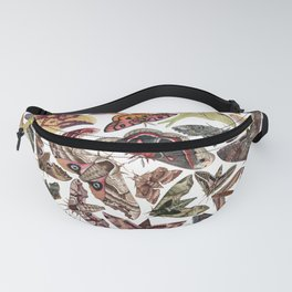 Moths of North America Fanny Pack