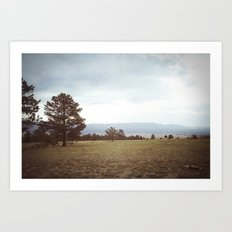 set free::buena vista, co Art Print