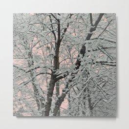 Big Tree In Snow Metal Print