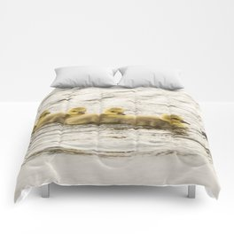 Wildlife family ducklings Comforters