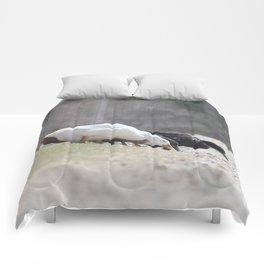 Ducky Police Call Comforters