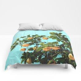 Summer Orange Tree Comforters