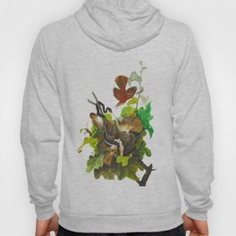 Ferruginous Thrush John James Audubon Vintage Birds Of America Illustration Hoody