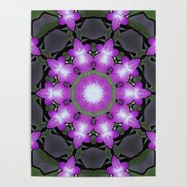 mandals violet flower Poster