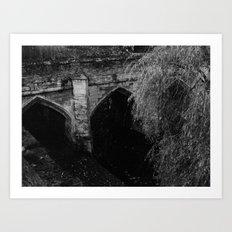 Eltham Palace Bridge Art Print