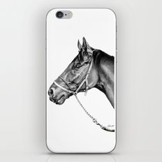 Sir Alfred - Racehorse : Graphite iPhone & iPod Skin