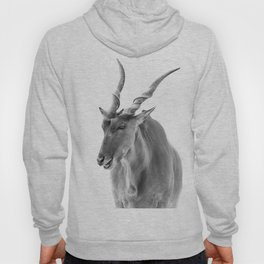 Common Eland Hoody