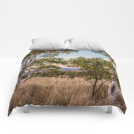 Mornington wilderness Comforters