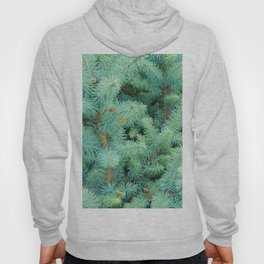 Thorns of Fir Hoody